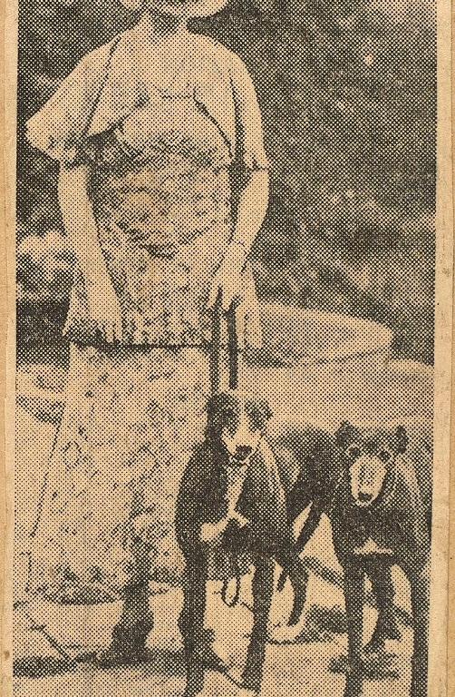 Norah Runge scrapbook. Parliamentary Archives, RUN/1